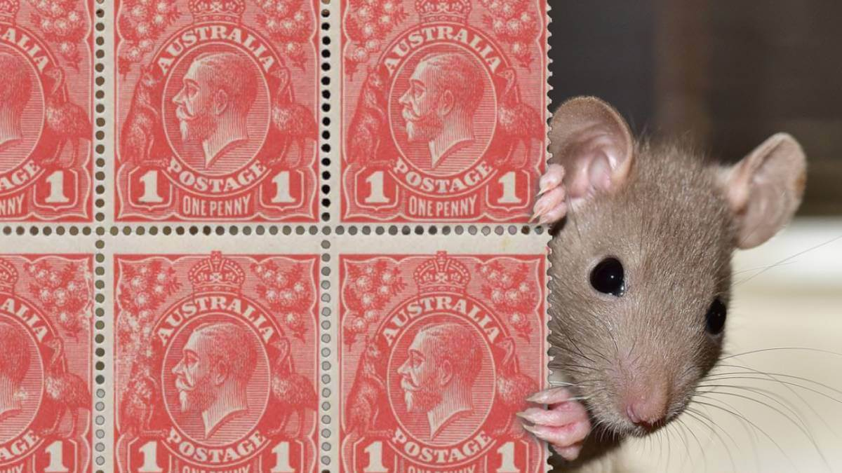 Apology to rich people Punk Philatelist header